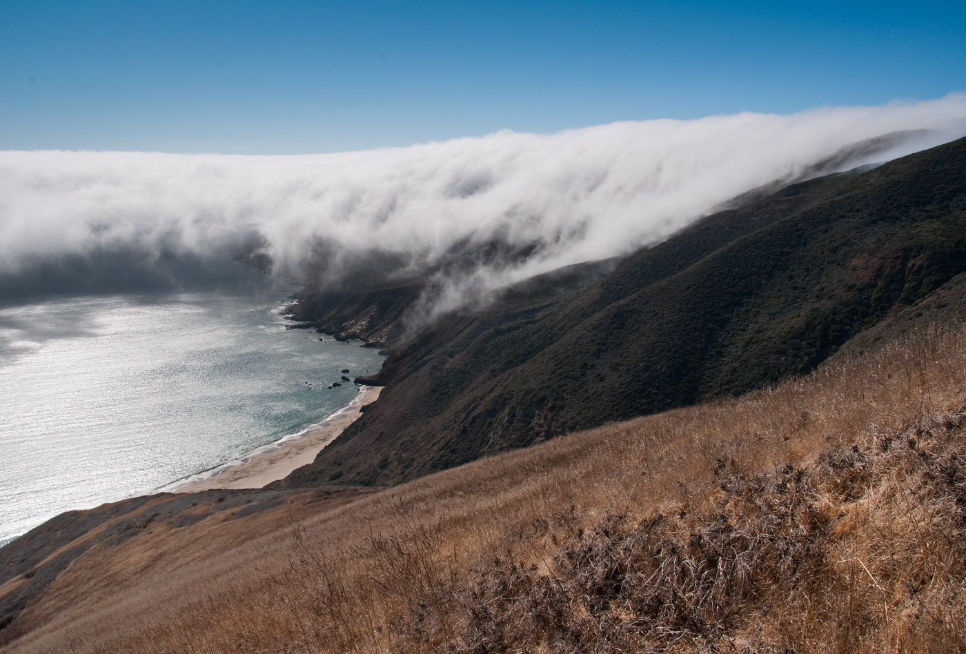 Point Sal fog. Photo by Stuart Wilson.